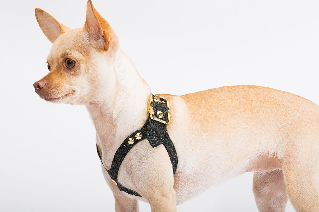 Brikk-Lux-Dog-Harness-3
