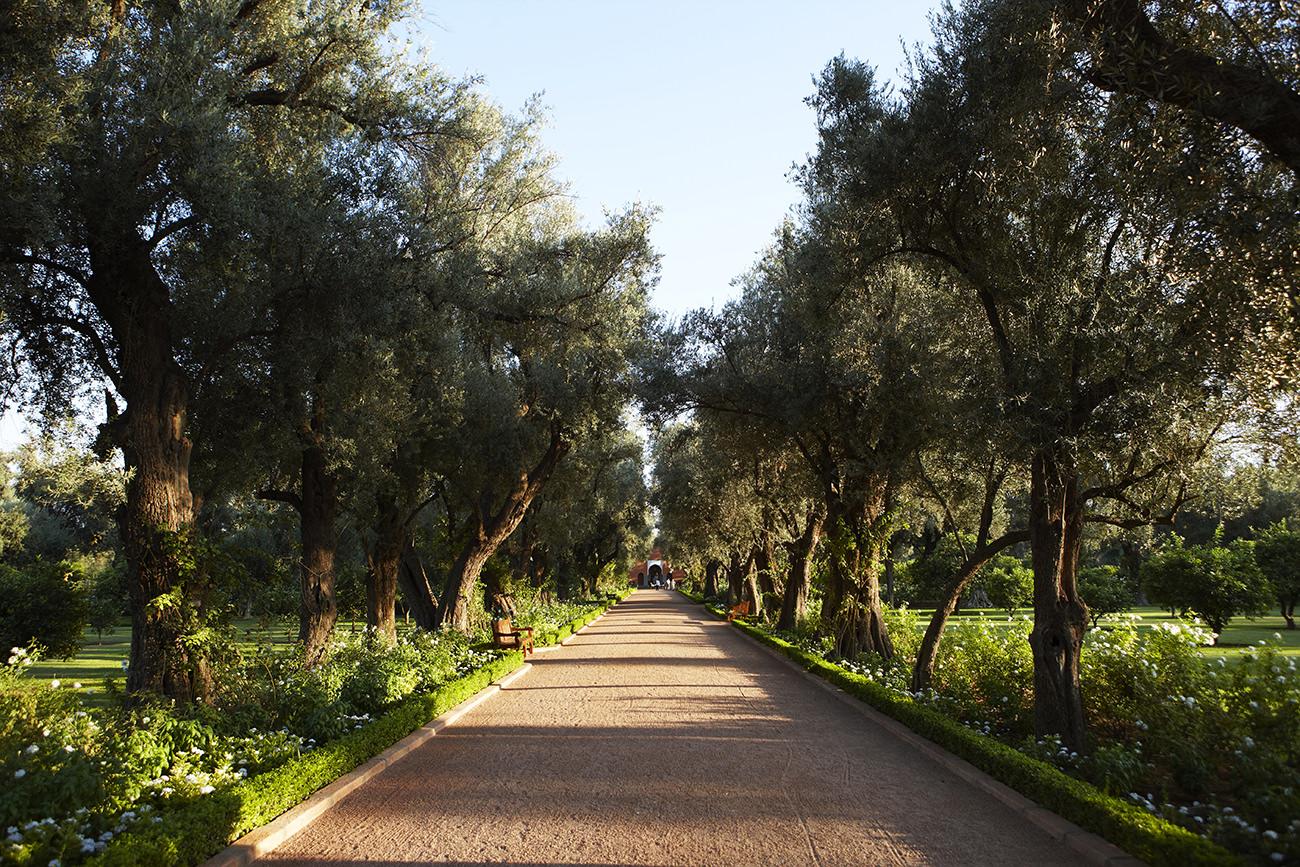 La-Mamounia-Marrakech-2